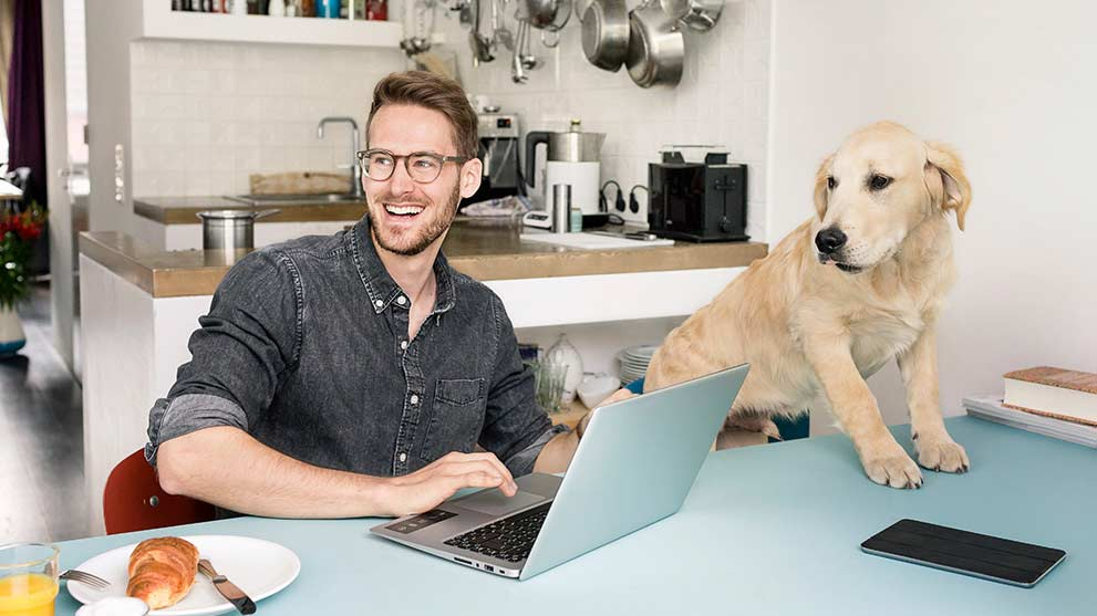 Man looking at the laptop with the dog